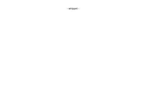 Www.whippetcoffee.pl